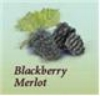 Orchard Breezin - Blackberry Blast Wine Kit