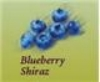 Orchard Breezin - Blueberry Bliss Wine Kit