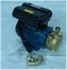 Wine Transfer Pump - Tellarini 0.5 HP Bronze